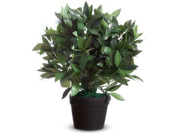 Kunstpflanze Lorbeerbaum I