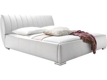meise.möbel Polsterbett Bern 200x200 cm Kunstleder Weiß mit Bettkasten/Lattenrost