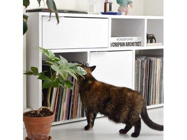 Personalisierbares Schallplattenregal aus Spanplatte in Weiß.