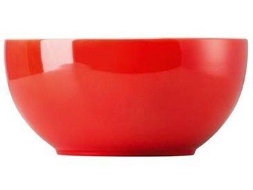 Thomas Schüssel Sunny Day Red 17 cm /Rot, Porzellan