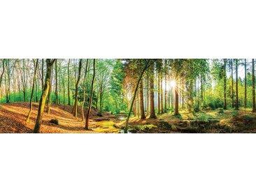 EUROART Acrylbild 50 x 180 cm Green Moments III /Grün, Acryl