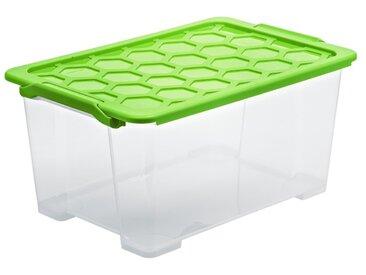 Rotho Aufbewahrungsbox Evo Safe 44l /Grün, Kunststoff