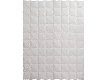 Centa-Star Daunenbettdecke Ambiente 155 x 220 cm /Weiß, Baumwolle