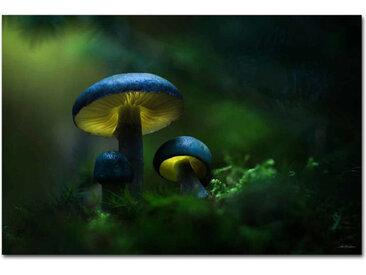 """Kollektion Wiedemann Bild """"GREEN"""", Mehrfarbig, Materialmix"""