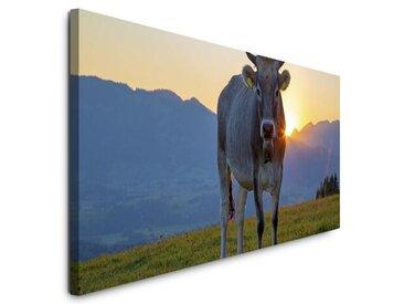 Leinwandbild Kuh im Allgäu