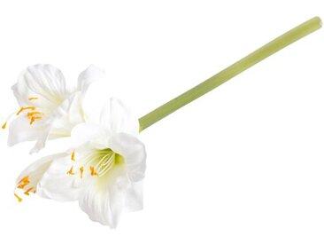Kunstblume Amaryllis Stängel, Büsche und Sprays