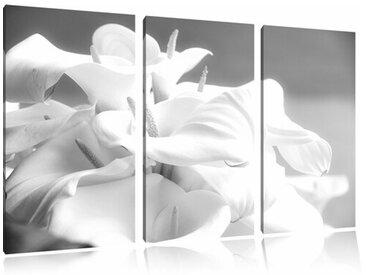 """3-tlg. Leinwandbilder-Set """"Wunderschöne weiße Calla Lilien"""", Fotodruck"""