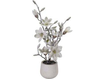 Mittelstück Magnolia in Vase
