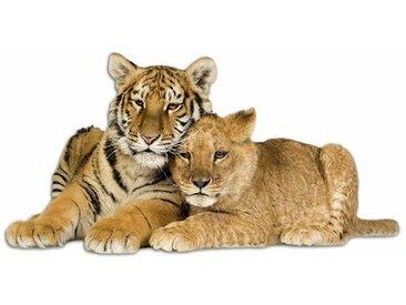 Wandsticker Tiger, Löwe