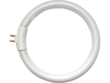 12W G10q Leuchtstoffröhre
