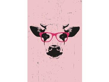 Gerahmtes Leinwandbild Kuh mit Brillen