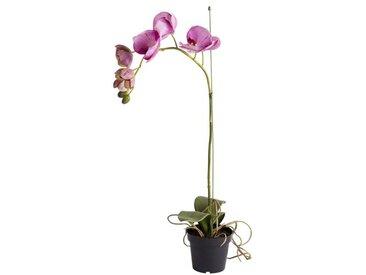 Kunstblume Orchidee in Topf