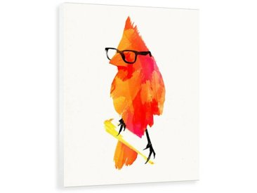 Leinwandbild Vogel Punk