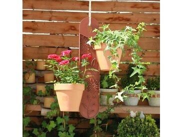 Blumenampel Chaffins