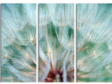 3-tlg. Leinwandbilder-Set Pusteblumen im Detail