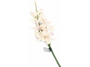 Kunstblumen-Set Cymbidium-Orchidee (Set of 6)