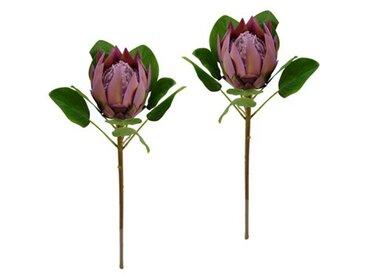 Kunstblume Protea