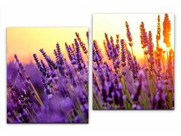 2-tlg. Leinwandbilder-Set Lavendel Felder