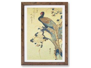 Gerahmtes Poster Pheasant & Chrysanthemums von Utagawa Hiroshige