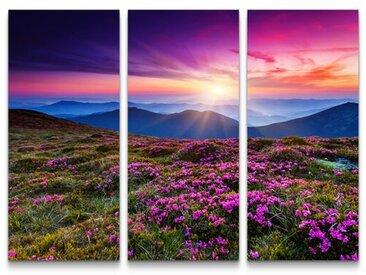 3-tlg.Leinwandbilder-SetPinke Rhododendronwiese in den Karpaten - Ukraine