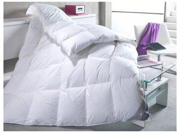 Vier-Jahreszeiten Kassettendecke Body Perfect Modern Line 100 % Daunen (Warm)