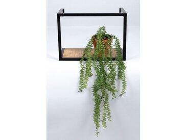 2-tlg. Blumenampel-Set Karon
