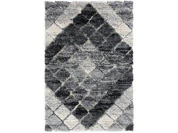 Hochflor Shaggy Teppich Grau Bahama 8815