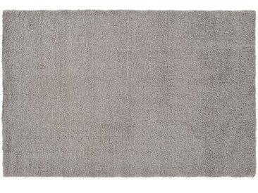 Innen-/Außenteppich Baulch in Grau