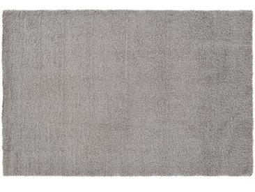 Innen/Außenteppich Baulch in Grau