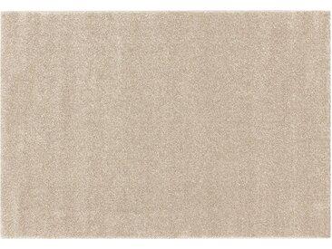 Hochflorteppich - beige - Synthethische Fasern - Sconto