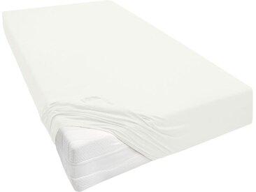 Biberna Jersey Spannbettlaken, für Boxspringmatratzen, enthält Baumwolle und Elasthan