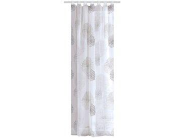 Home Wohnideen Schlaufenvorhang Rawlins Voile 245 x 140 cm, transparent