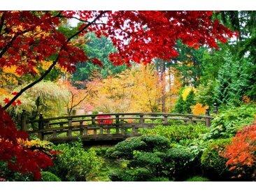 Home affaire Fototapete »Bridge in Japanese Garden«, grün