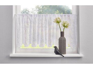 my home Scheiben-Gardine  »Tabea«, weiß, Material Stoff / Voile