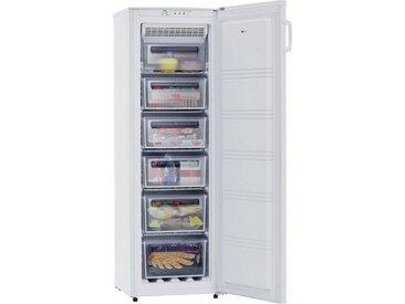 Tiefkühlschrank GS 270-1 NF A++E, exquisit