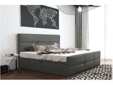 Stylefy Olomana Polsterbett Kunstleder 200x200 cm Grau