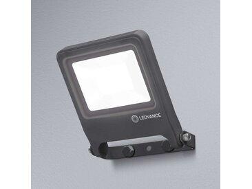 LEDVANCE Endura Floodlight LED-Außenstrahler 20W