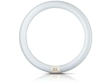 "Philips G10q Leuchtstofflampe ""G10Q"" in Tageslicht (G10q, A)"