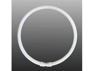 2GX13 T5 55W Ring-Leuchtstofflampe, warmweiß