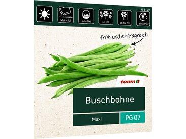 toom Buschbohne 'Maxi'