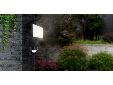 LED-Außenstrahler 'Darius' 20 W 1600 lm