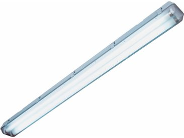 Leuchtstoffröhre 2 x 58 W Länge 156,5 cm EEK: A
