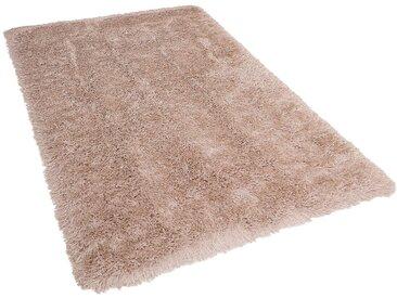 Teppich beige 200 x300 cm Hochflor CIDE