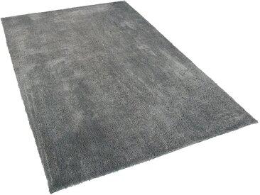 Teppich hellgrau 200 x 300 cm Shaggy EVREN