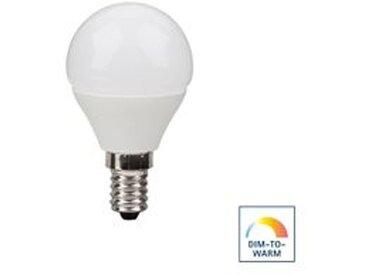 Sigor LED Kugellampe Ecolux E14, 6 W, Dim-to-Warm