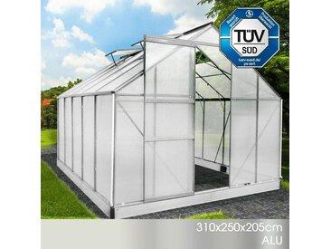Aluminium-Gewächshaus 310x250x205