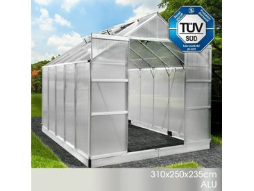 Aluminium-Gewächshaus 310x250x235