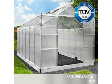 Aluminium-Gewächshaus 380x250x235