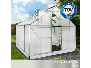 Aluminium-Gewächshaus 250x250x205