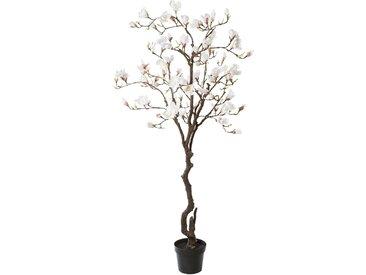 Creativ green Kunstpflanze Magnolienbaum, im Kunststofftopf H: 220 cm weiß Künstliche Zimmerpflanzen Kunstpflanzen Wohnaccessoires